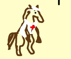 Horse Nurse