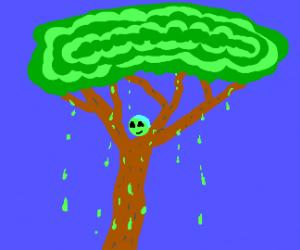 Tree green slimes / protozoons