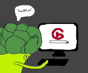 broccoli impressed by google
