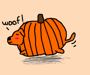 a pumpking doggo with green tail