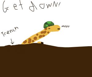 Giraffe is struggling in war