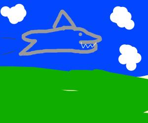 shark flying