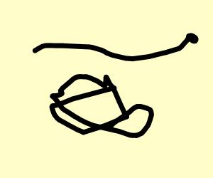 Snake flying over bear