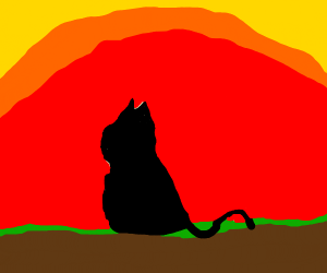 a beautiful sunset and Siamese cat silhouette