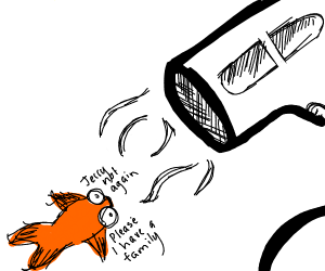 Blowdrying your fish