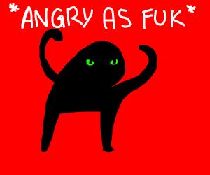 Angry as fuk cat