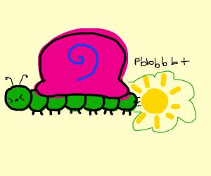 snail caterpillar farts the sun