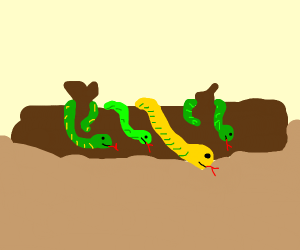 Log with snakes