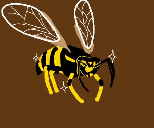 Sparkling Wasp
