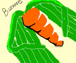 a carrot with wings (bizzare!)