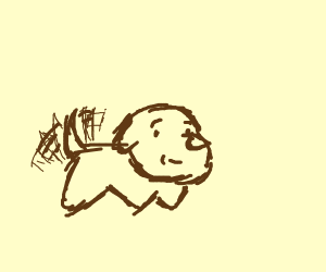 Dog wagging its tail