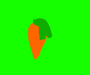 Literally just a carrot.