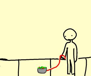 person walking his pet-salad