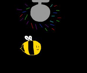 bee at.disco
