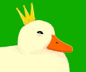 Duck king