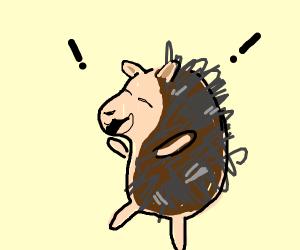 Silly Porcupine