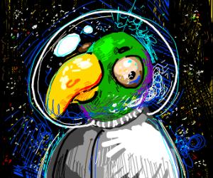 space boi parrot