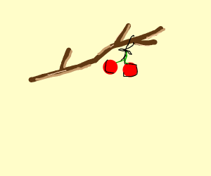 Cherry tied to a stick