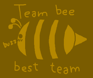 Team bee is the best