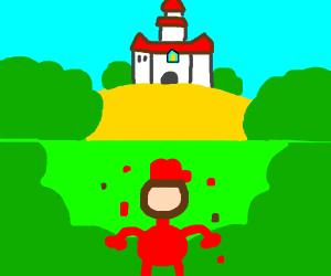 Knockoff Mario finds th REAL Mushroom Kingdom