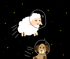 Sheep and dog floating in space