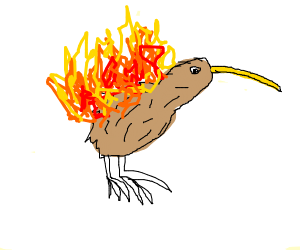 A burning Kiwi (bird)