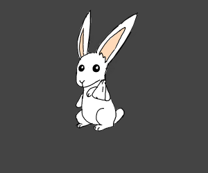 Rabbit with a broken arm
