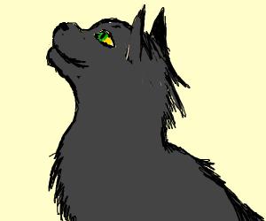 Hollyleaf (Warrior Cats)