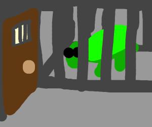 turtle jail