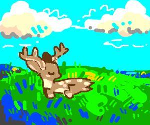 Baby deer having a nap in a field