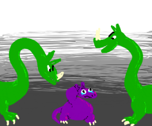 Small Purple Dragon bullied by Larger Dragons