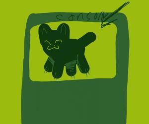 Console Cat