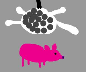Pig at the Disco
