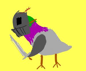 pigeon knight
