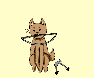 Dog doesn't know how to use bow and arrow