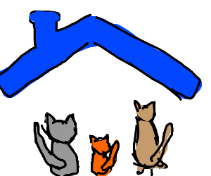 three cats under a blue roof