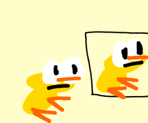 A duck looking at a duck picture