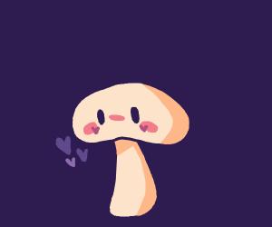 E-girl mushroom