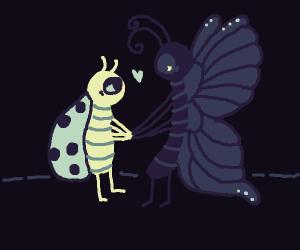 odd bug couple