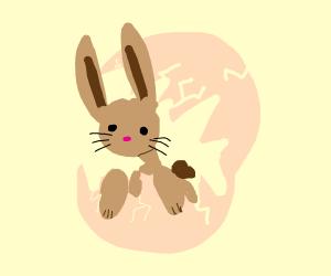 Bunny inside an egg