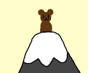 Bear climbs mountain