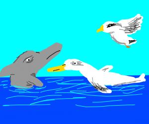 A bird & dolphin looking at a bird/dolphin X