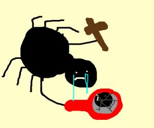 A sad christian spider broke a mirror