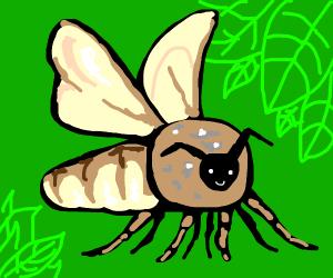 Mothe
