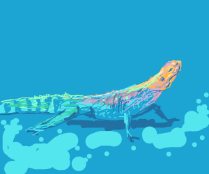 rainbow lizard stands in suds