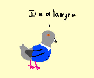 bird is a lawyer