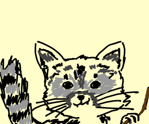 A racoon that is smirking