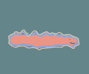 happy flatworm