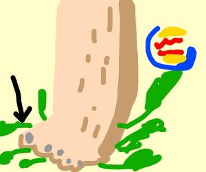 Burger King Toenail