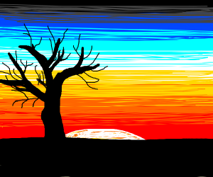dead tree infront of sunset